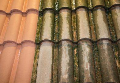 Het nut van uw dak ontmossen